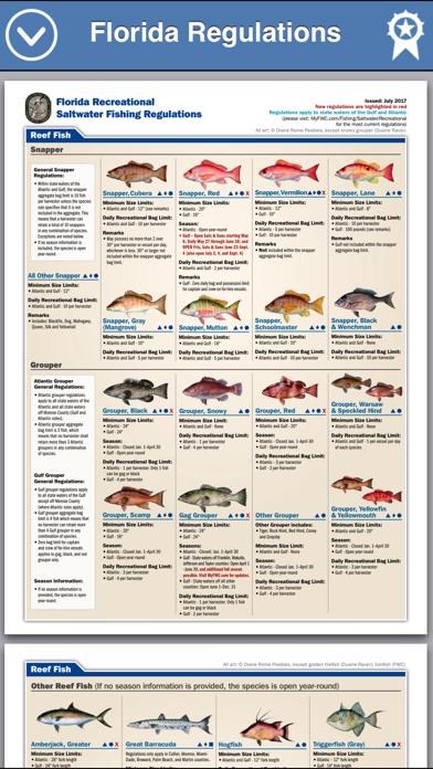 Fish The Gulf review screenshots