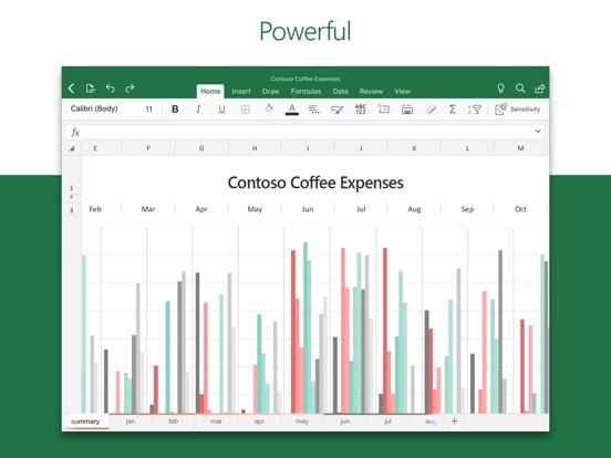 Screenshot #1 for Microsoft Excel