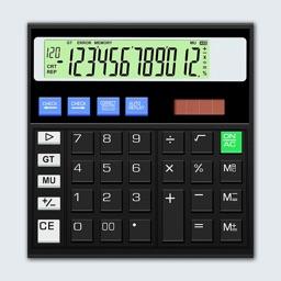 Real Citizen Calculator 2021