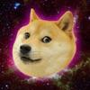 2048 Doge Version Pro