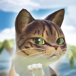 냥냥 고양이 리조트