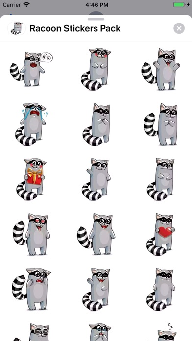 Screenshot for Racoon Stickers Pack in United States App Store