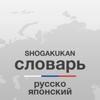 プログレッシブ ロシア語辞典