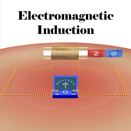 The Electromagnetic Induction