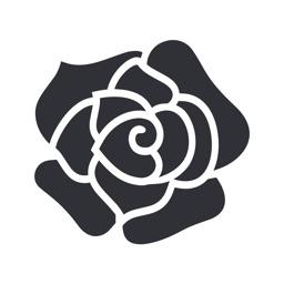 Rozaexpress – доставка цветов.