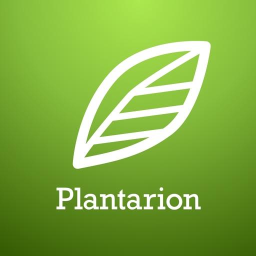 Plantarion