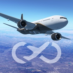 Infinite Flight Simulator analyse, service client