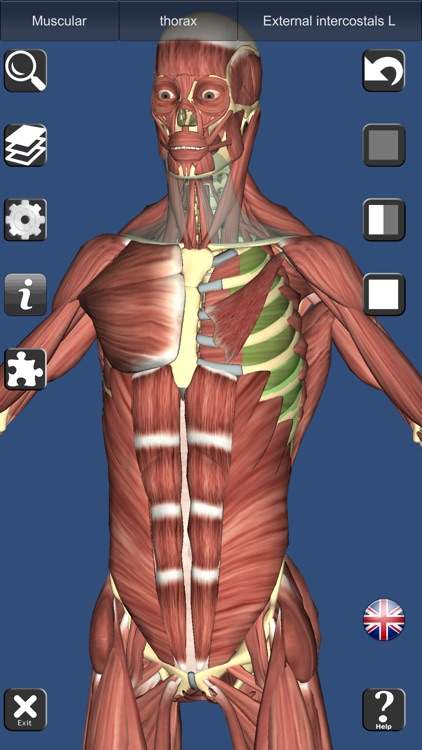 3D Anatomy Learning screenshot-0