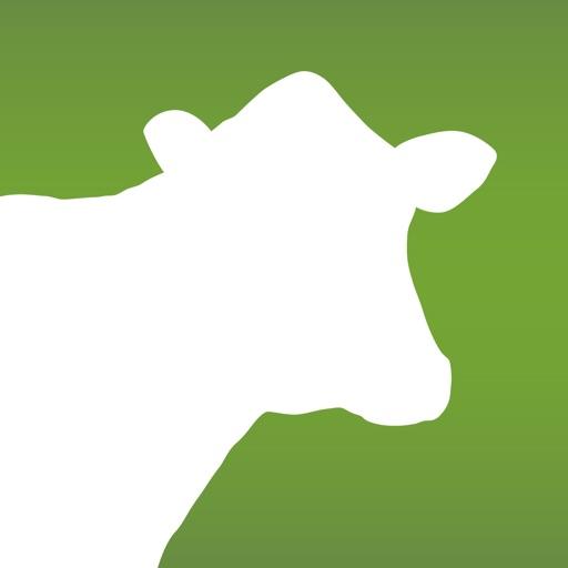 Dairy Health Check