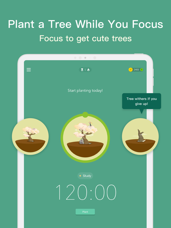 Forest - Stay focused Screenshots