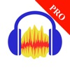 Audacity Pro