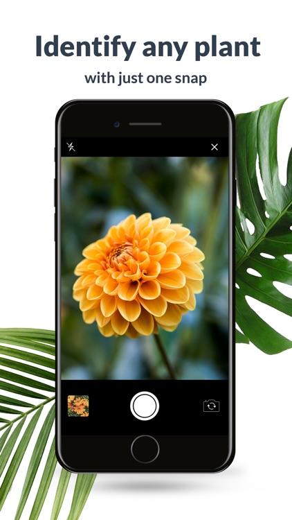 Plant Identification Lite
