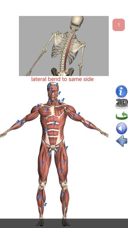 Visual Anatomy Lite screenshot-8