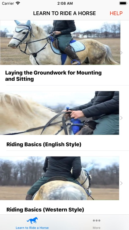Learn to Ride a Horse