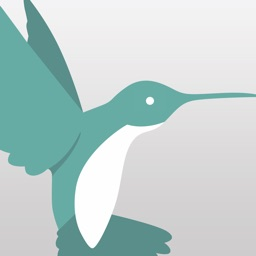 iOffice Hummingbird
