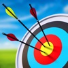 Arrow Master: Archery Game
