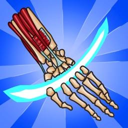 Anatomy Ninja Upper Limb