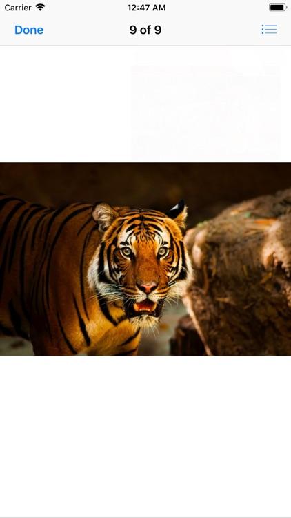 Real Tiger Stickers screenshot-9