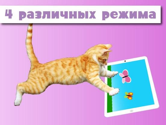 Скачать HappyCats игра для кошек