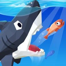 Activities of Big Big Fish