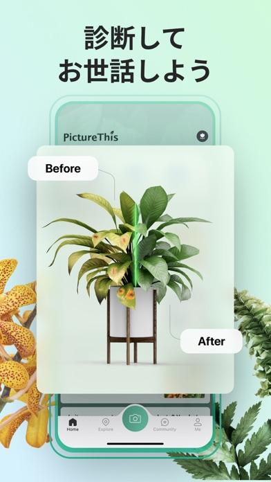 PictureThis:撮ったら、判る-1秒植物図鑑 ScreenShot3