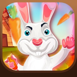 Buddy The Bunny