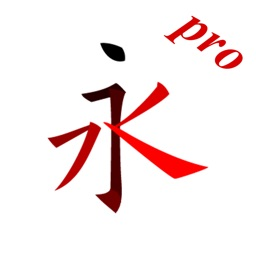 Chinese character stroke Pro