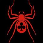 Spider Classic Solitaire icon