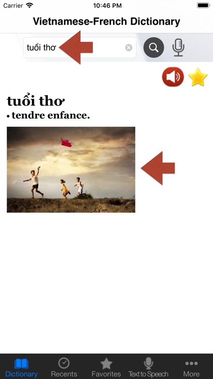 Vietnamese-French Dictionary++ screenshot-4
