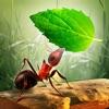 小さなアリのコロニー - 放置系ゲーム