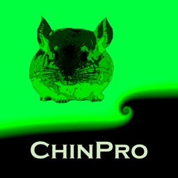 ChinPro International
