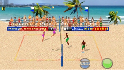 Over The Net Beach Volleyball