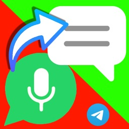 Audio Message to Text Whats