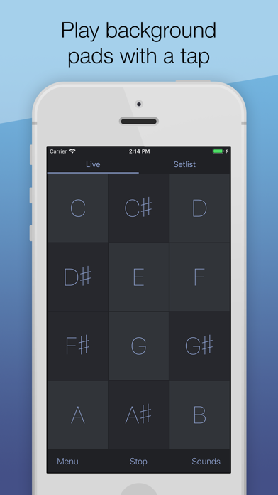 download AutoPad — Ambient Pad Loops apps 1