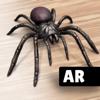 Linda Schnetzinger - AR Spiders & Co: Scare friends アートワーク