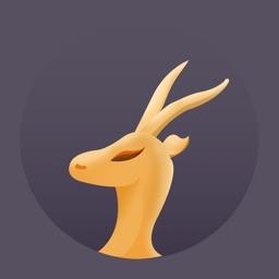 羚羊加速器-海外网络加速
