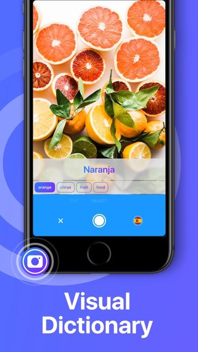 download iTranslate Translator apps 6