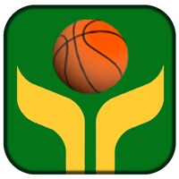 Quick Shot Basketball