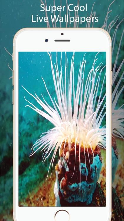 Aquarium Live Wallpapers for U screenshot-4