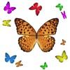 1001 Butterflies
