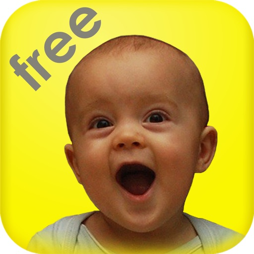 Baby Sound Lite – Touch Flashcards for Toddler and Preschool Children – Entertain and Learn