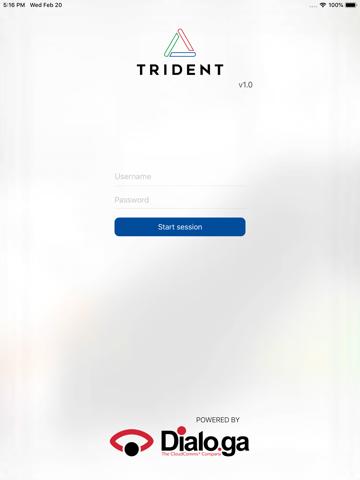 Dialoga Trident Supervisor - náhled