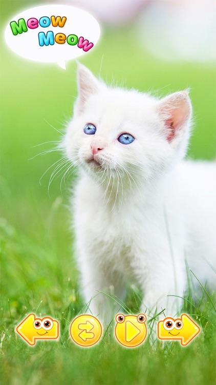 Cute animals sounds / noises