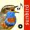 Chants d'oiseaux automatique