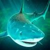 疯狂饥饿鲨鱼 - 海洋世界生存