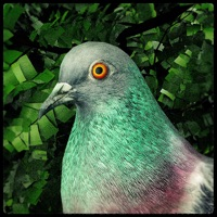 Pigeon: A Love Story Hack Resources Generator online