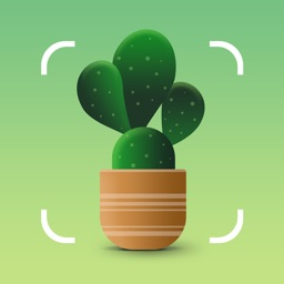 NatureID: Plant Identification