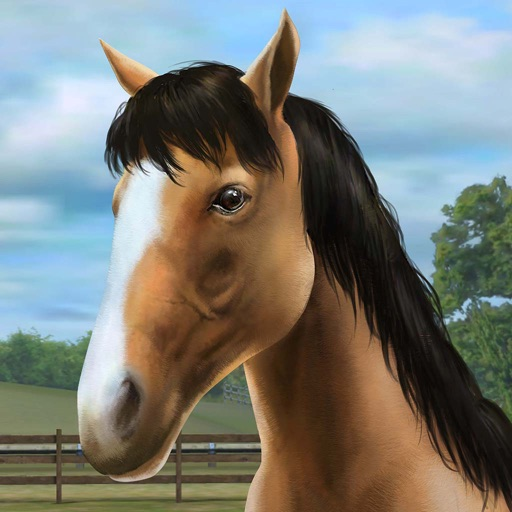 My Horse Review