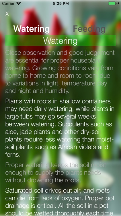 House Plants screenshot-6