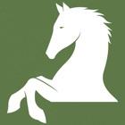 Gallopica Equitación icon